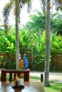 Ka Inato, Puerto Princesa, Palawan